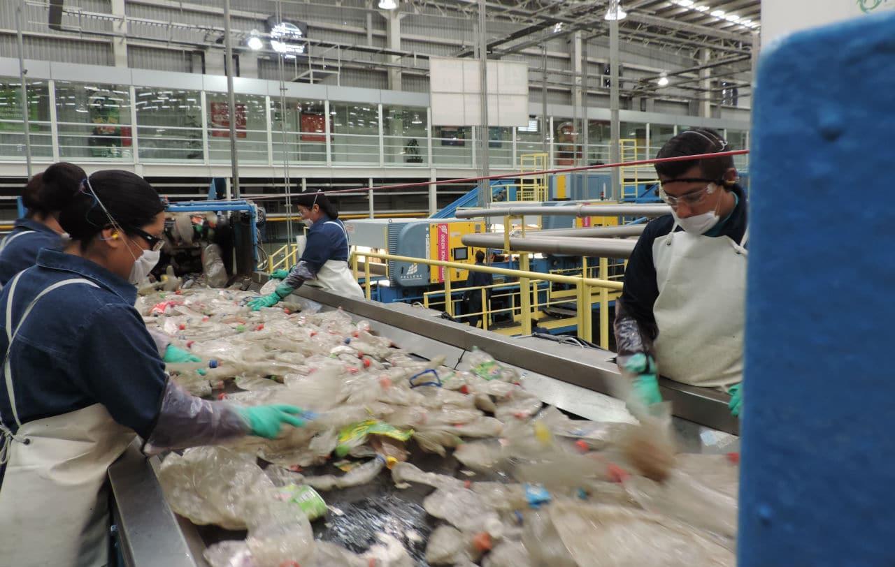 reciclaje-pet-mexico