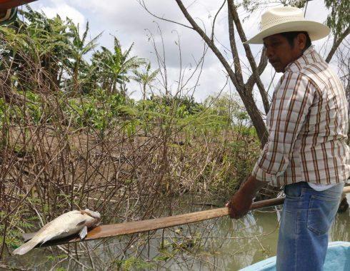 Se vive desempleo y pobreza en Tabasco